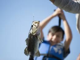 ငါးမျှားရတာဝါသနာပါတဲ့အဖေရဲ့ ချစ်စရာကောင်းတဲ့ အကြံဥာဏ်